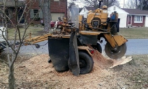 Stump Grinding Machine - Professional Results